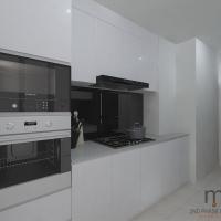 Kitchen cabinets_v1